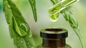 The Power Of CBD Oil My Review: Does It Work?